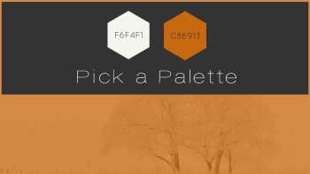 Blog-Pumpkin-Spice-Color-Palette-Moovly