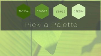 Blog-Tropical-Green-Video-Color-Palette-Moovly