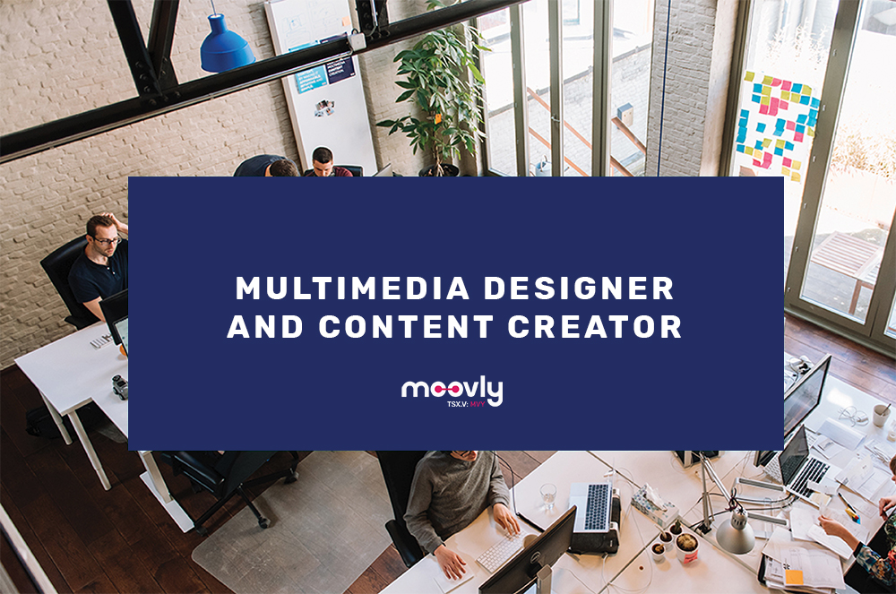 Multimedia designer career